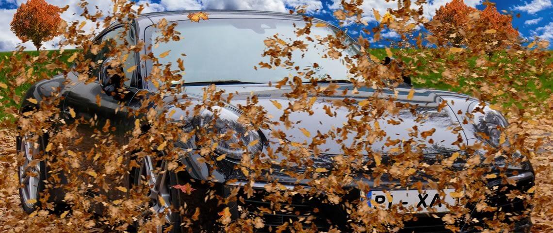 Veilig autorijden in de herfst. Hier geven wij enkele tips
